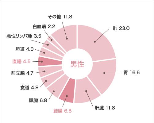 男性 円グラフ